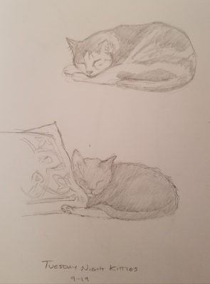 two pencil drawings of sleeping cats