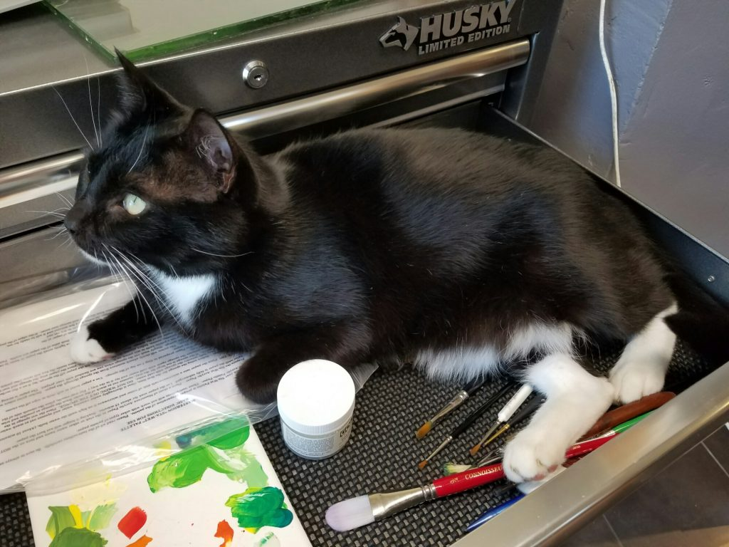 Black and white tuxedo cat in the drawer of a large toolchest, lying on paint brushes.